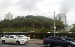 Не только каменные джунгли характерны Панама Сити, здесь достаточно парков и скверов.