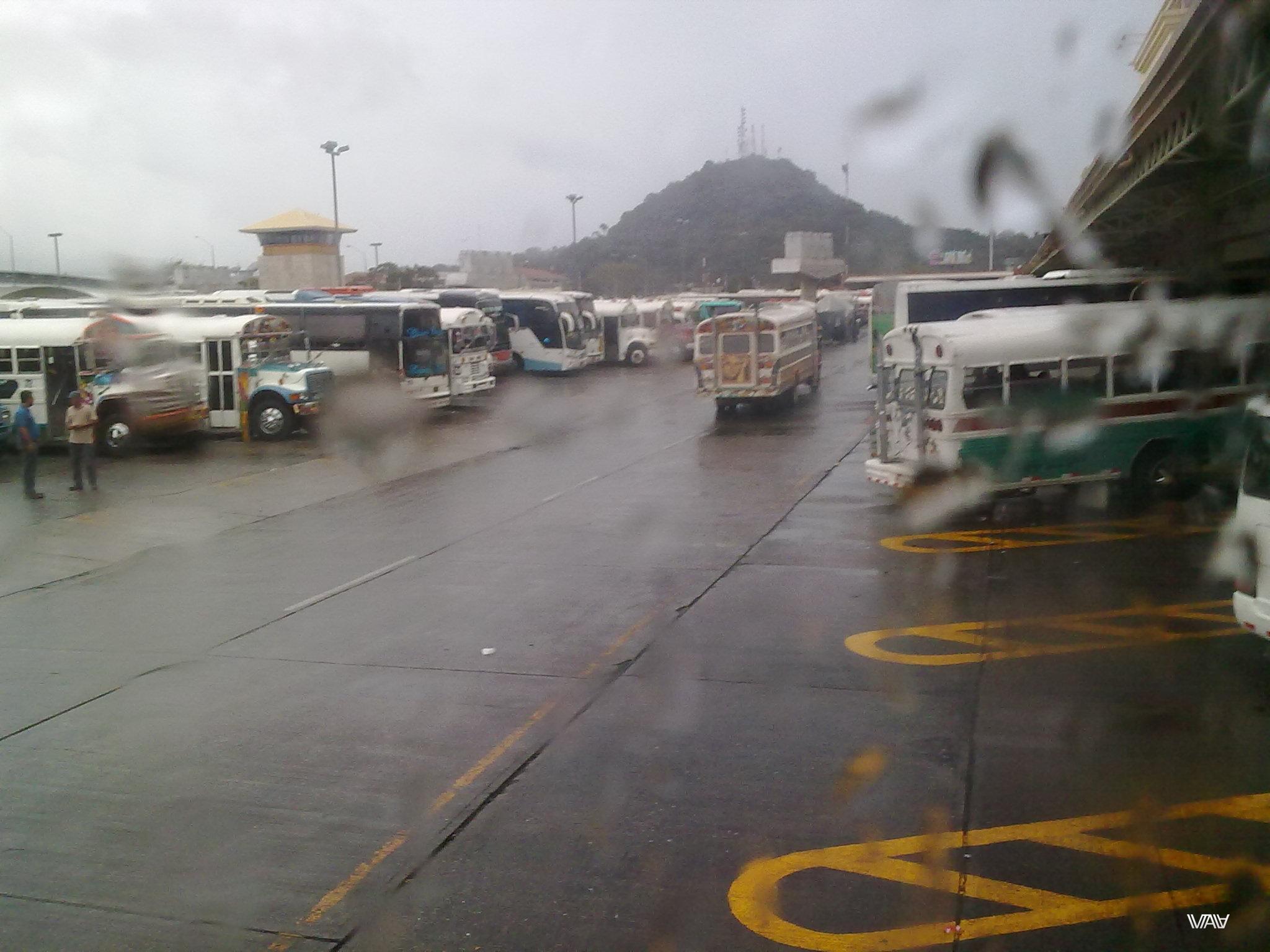 Панамские автобусы отдельный вид искусства!