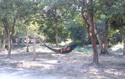 Отдыхающие монахи не такое уж и частое зрелище :) Камбоджа, Сием Рип, священный город Ангкор
