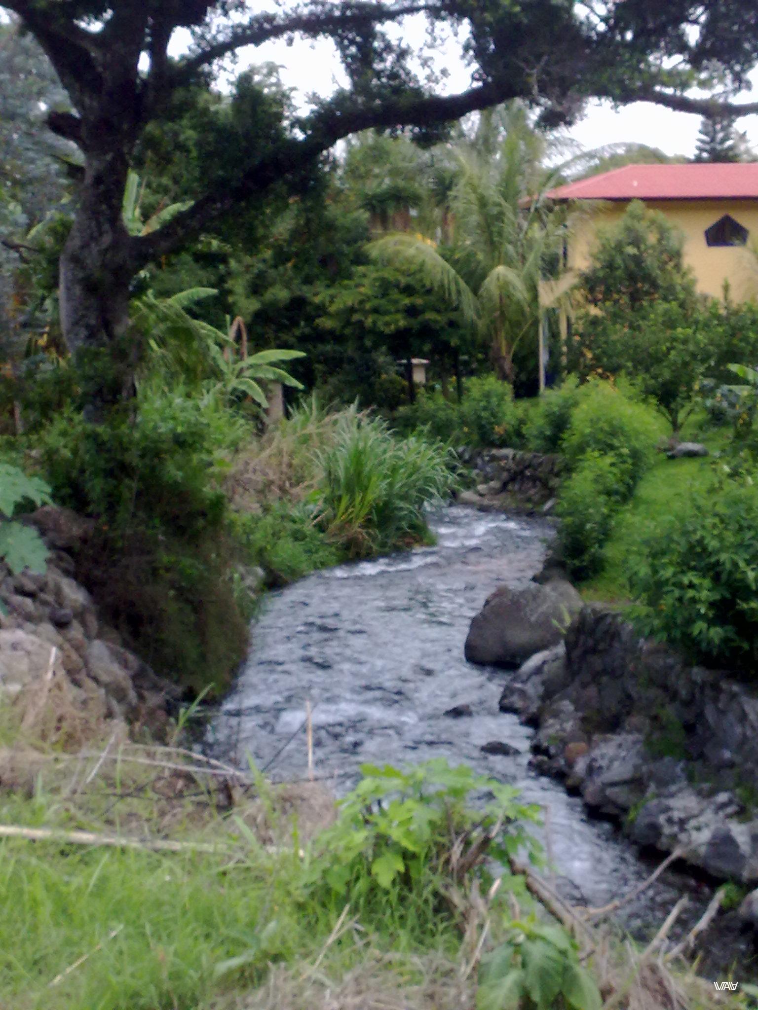 Small mountain rivers are everywhere in Bajo Boquete, Panama