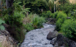 Small mountain rivers are everywhere in Bajo Boquete, Panama