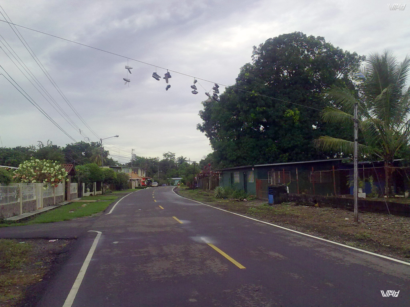 I have never seen sneakers on wires! Till now. David, Panama