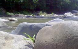 Природа прекрасна у горных рек. Горячие источники, недалеко от Бокете, Панама