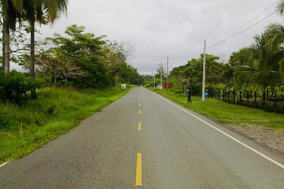 Окоймленный пальмами путь домой. Лас Лахас, Панама