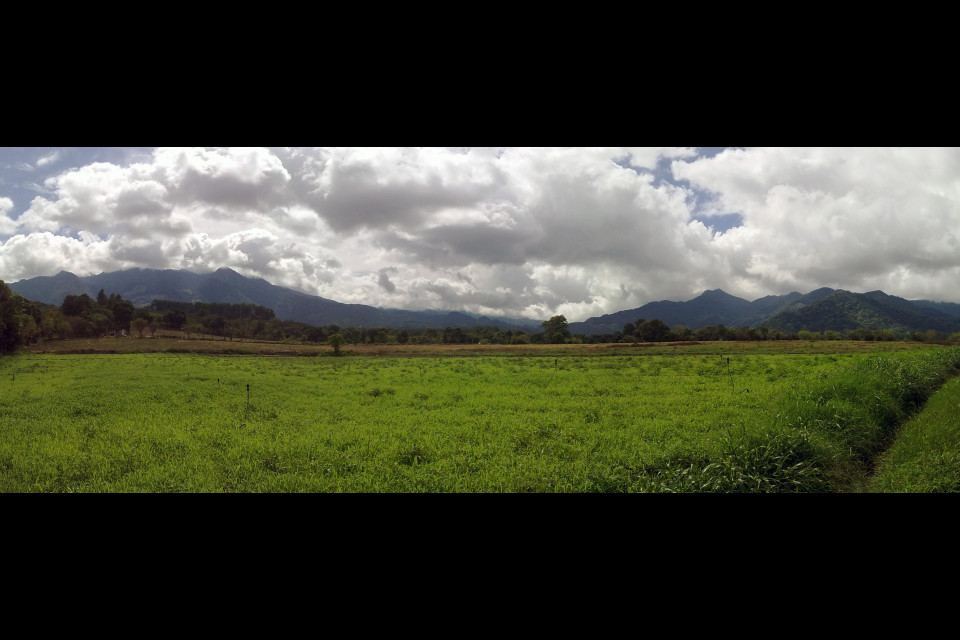 Local scenery with field and mountains. Bajo Boquete, Panama
