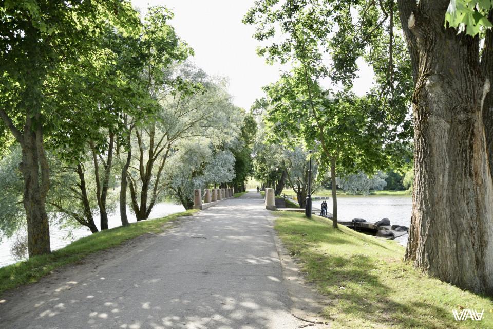 Дорога к замку повидала многое, а теперь ещё и асфальт. Несвижский замок, Несвиж, Беларусь