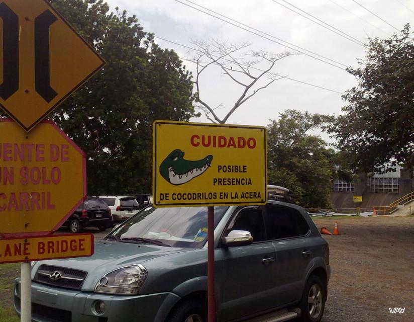 Внимание! Возможно присутствие крокодилов на тротуаре!.. Кажется, мое сердце ушло в пятки, а пятки засверкали. Так быстро я, наверное, в жизни не ходила :D Панамский канал, Панама