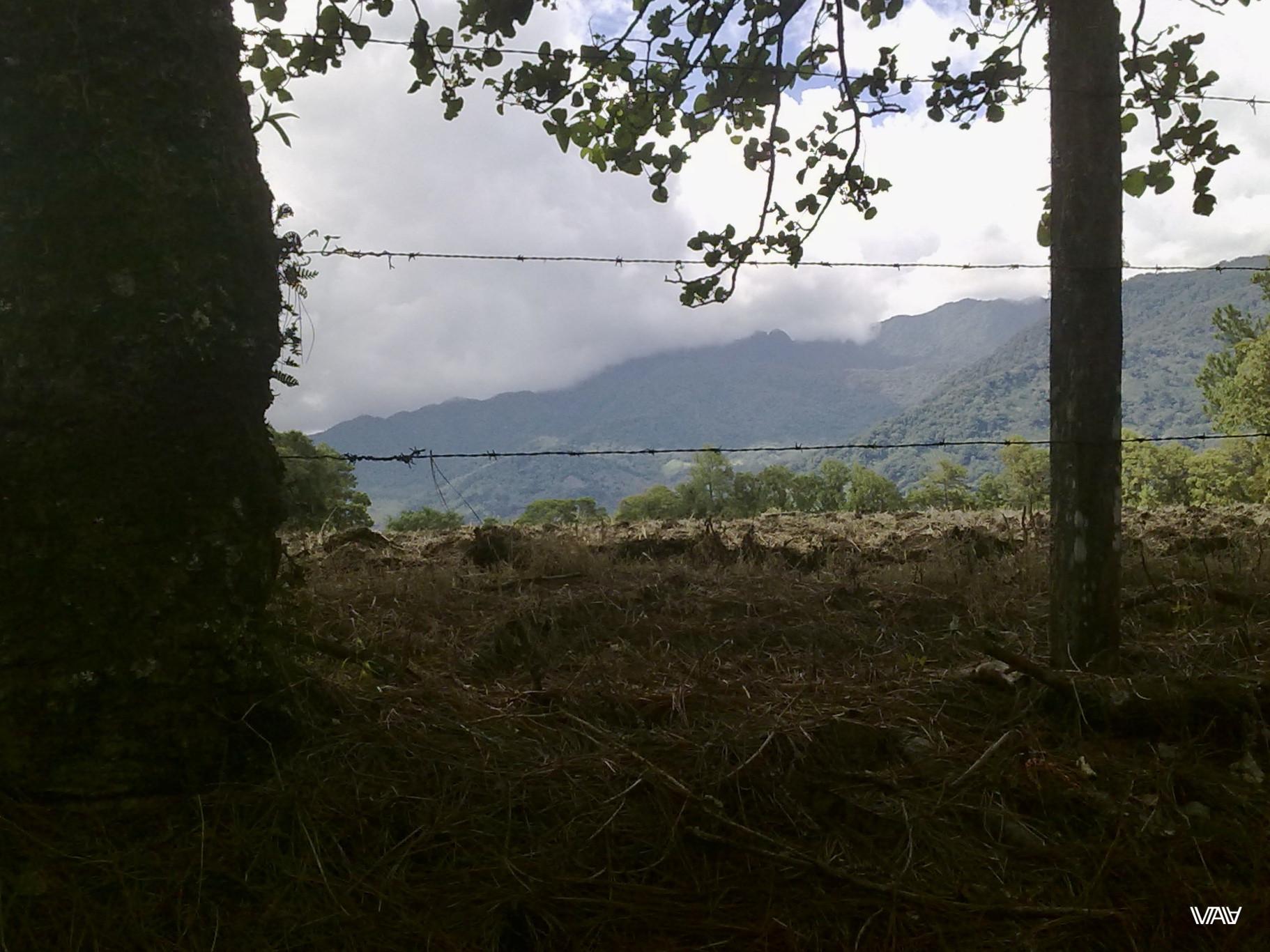 Свобода за колючим забором. Бахо Бокете, Панама