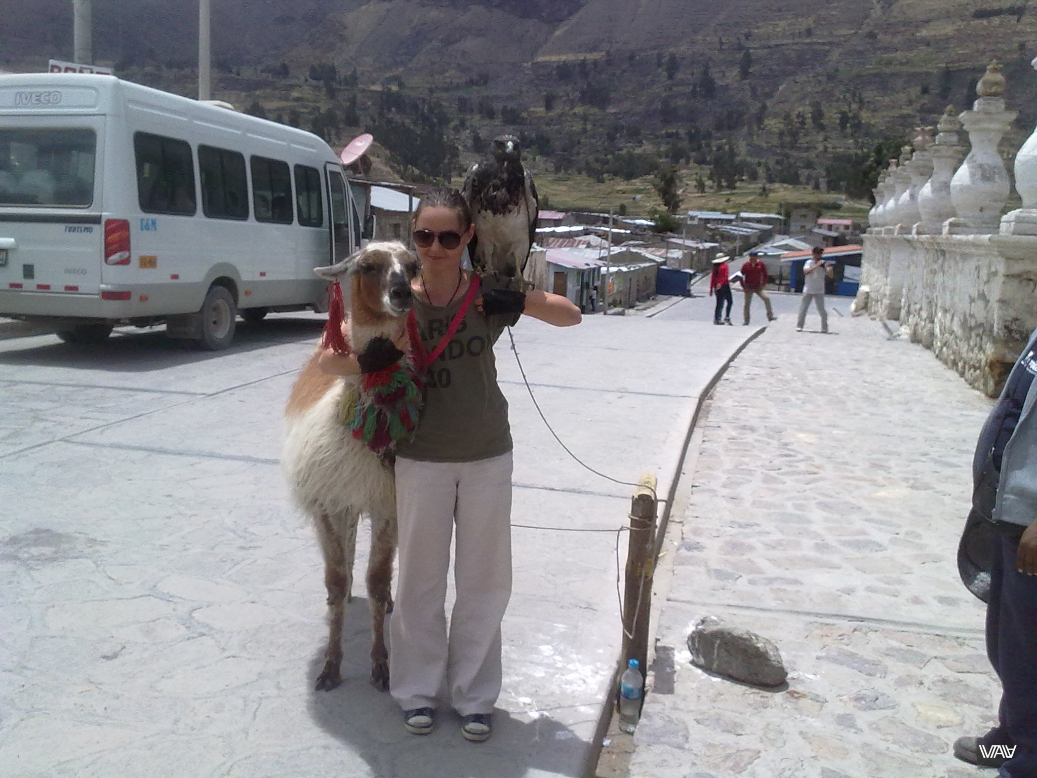 И тут я растаяла :D Мака, Перу